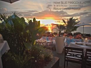 BLUE MARGOUILLAT - ST LEU - NATURAL CONCEPT PAYSAGE - DECEMBRE 2013
