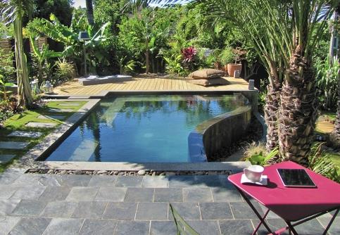 Natural Concept Paysage 2013 - Jardin île de la Réunion 974 (5)