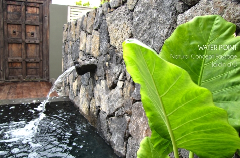NATURAL CONCEPT PAYSAGE - JARDIN D'Ô - WATER POINT - 2014 - ILE DE LA REUNION 3