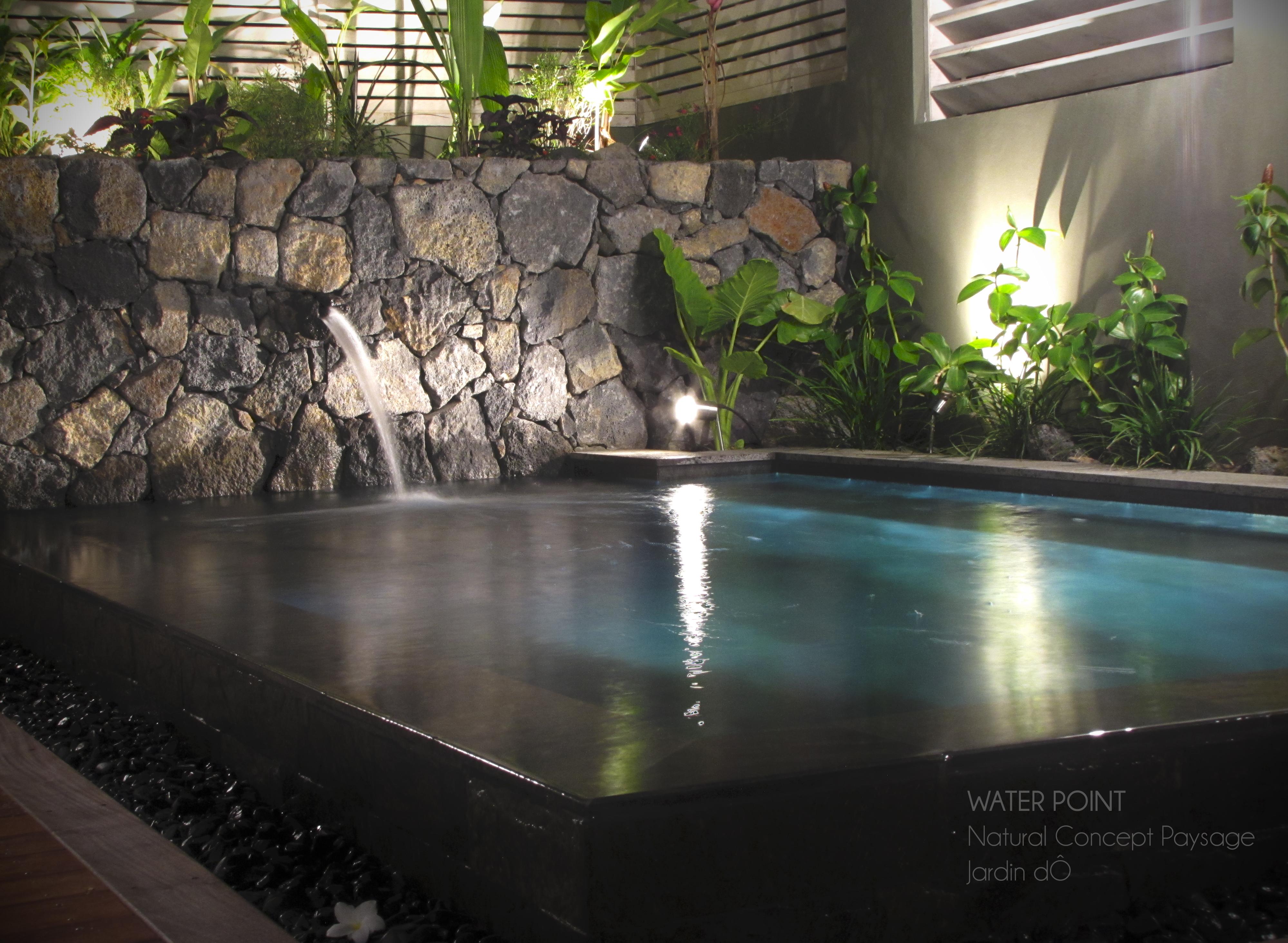 bassin de jardin réunion