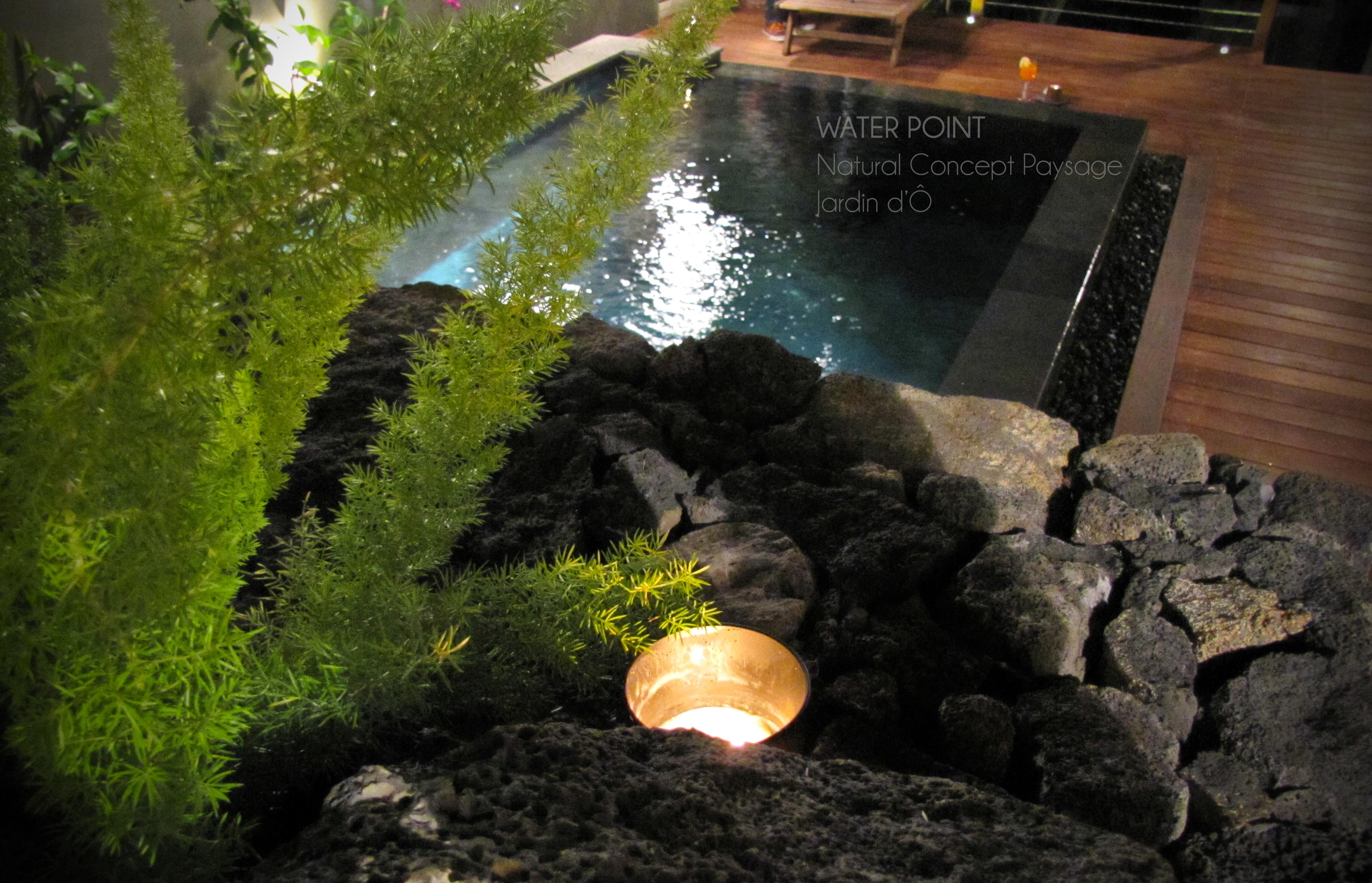 Bassin de jardin r union bassin de jardin Entretien jardin ile de la reunion