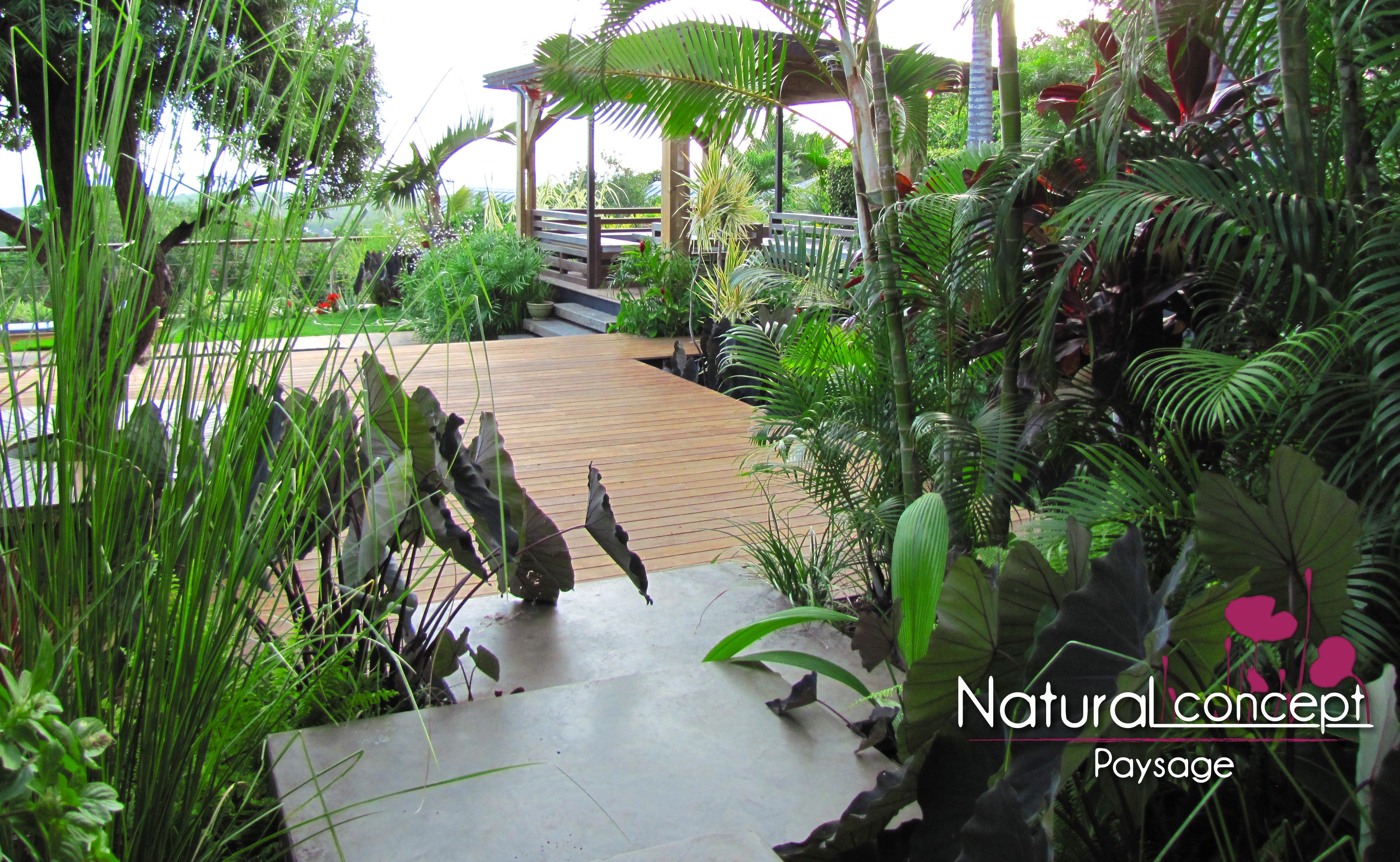 natural concept paysage jardin tropical exotique paysagiste reunon 974 natural concept. Black Bedroom Furniture Sets. Home Design Ideas