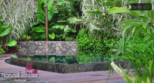 NATURAL CONCEPT PAYSAGE - SUMMERTIME - Île de la Réunion 974 - Jardin tropical - Piscine miroir