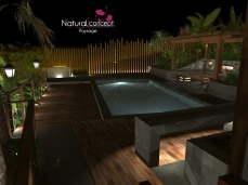 CONCEPTION 3D - NATURAL CONCEPT PAYSAGE (58)